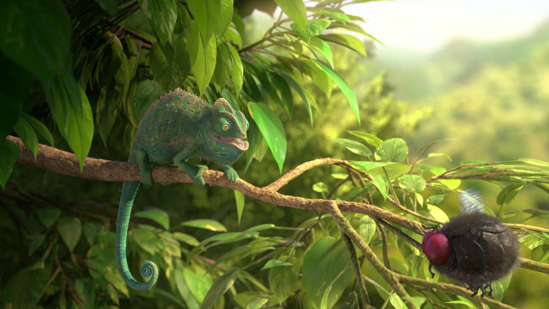 29590_Still_02_Our-Wonderful-Nature_The-Common-Chameleon.jpg